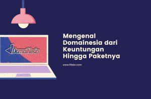www.domainesia.com